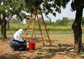 Poljoprivredno gospodarstvo 05